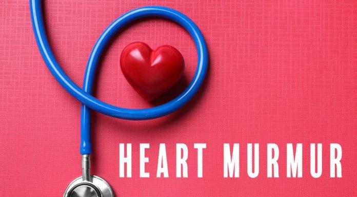 Heart Murmur - Iran Bio Medical